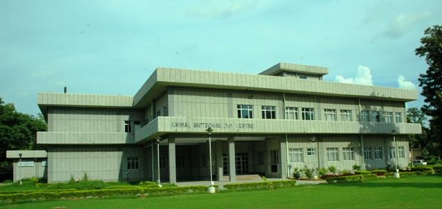 National Institute of Animal Biotechnology